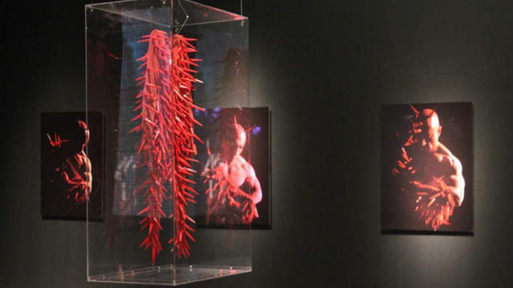 El artista trabaja sus músculos y es el protagonista de sus fotografías.