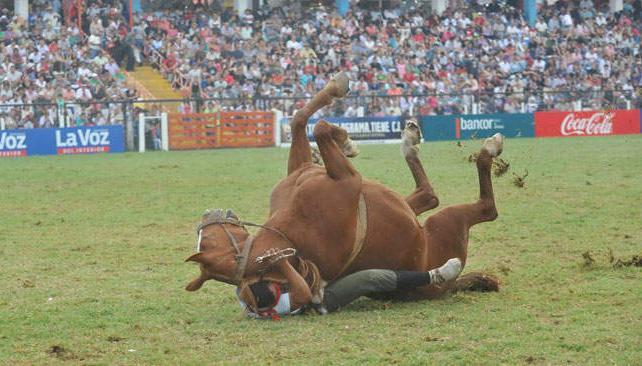 Una de las caídas más espectaculares la protagonizó el jinete chubutense Matías Hullipán.